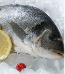 omega-3-fatty