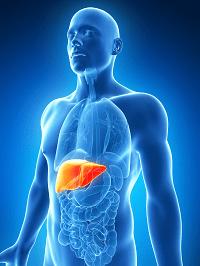 Herbalife faz mal ao Fígado
